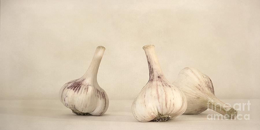 White Photograph - Fresh Garlic by Priska Wettstein