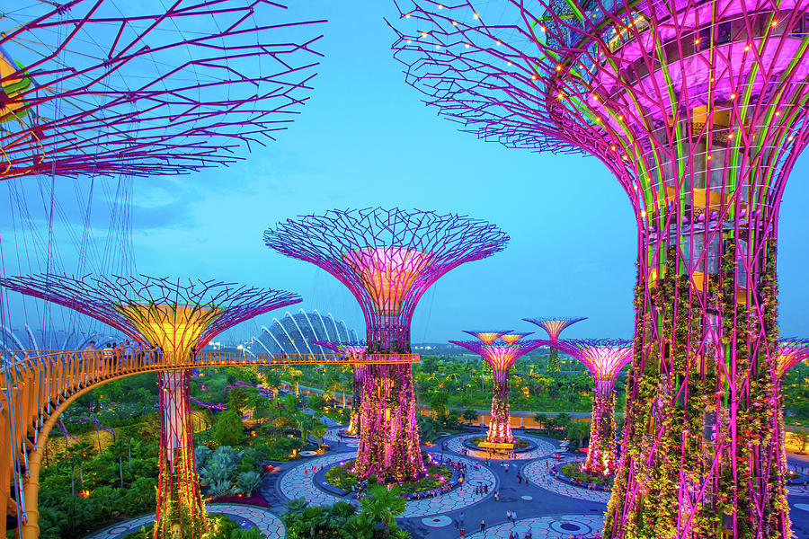 Gardens By The Bay, Singapore Photograph by Win-initiative