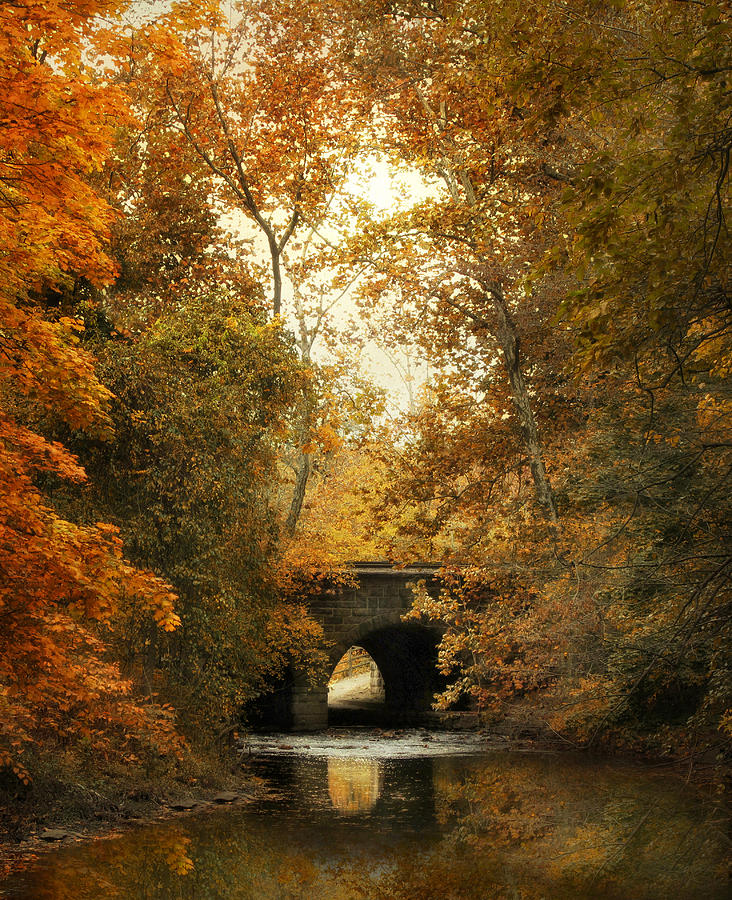 Autumn Photograph - Gentle Reflections by Jessica Jenney