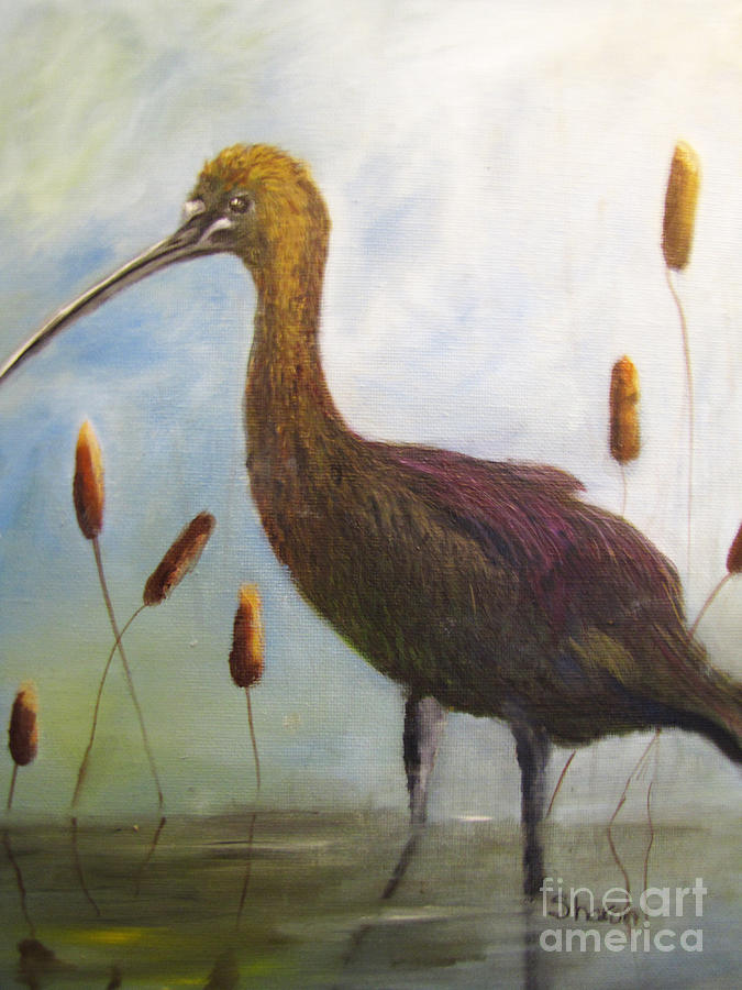 Ibis Painting - Glossy Ibis by Sharon Burger