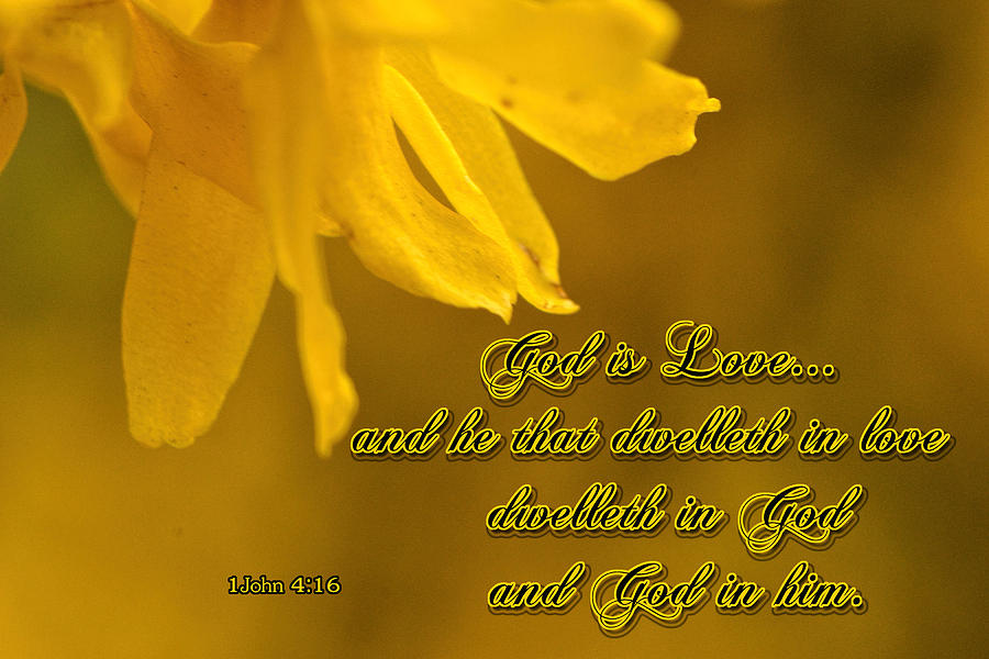 Scripture Photograph - God Is Love by Larry Bishop