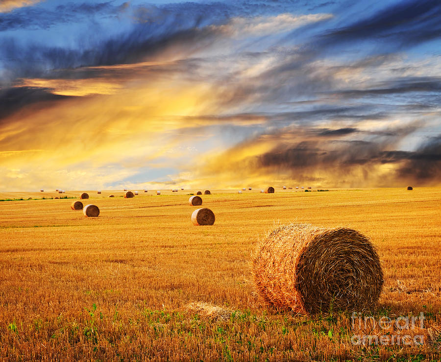 Golden Sunset Over Farm Field With Hay Bales Photograph