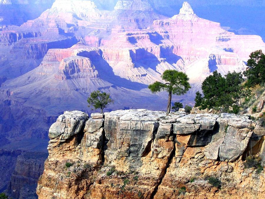 Arizona Photograph - Grand Canyon 1 by Will Borden