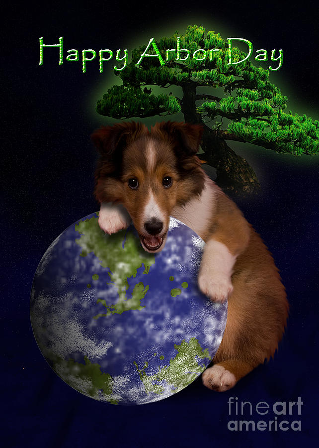 Happy Arbor Day Digital Art - Happy Arbor Day Sheltie Puppy by Jeanette K