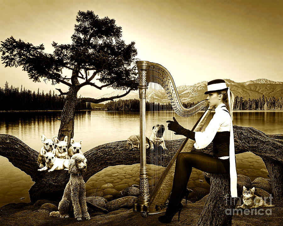 Attractive Photograph - High Fashion Harp by Milan Karadzic