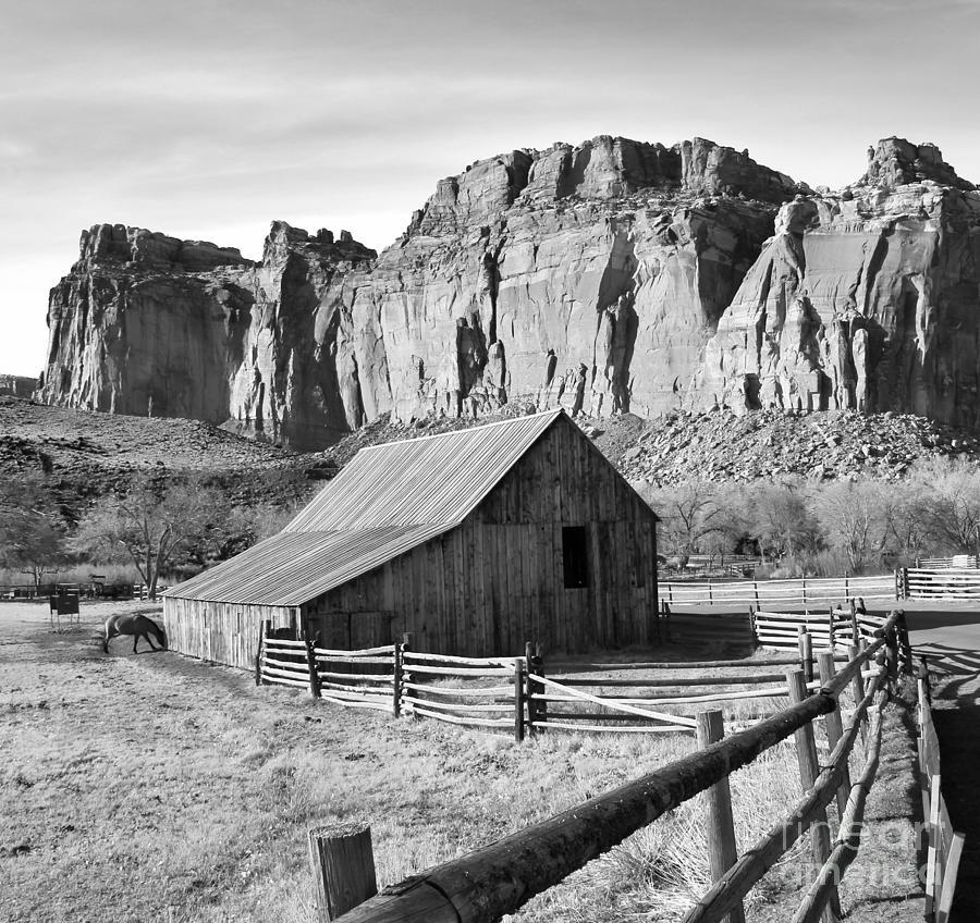 Horse Barn Photograph - Horse Barn In Fruita Utah by Jack Schultz