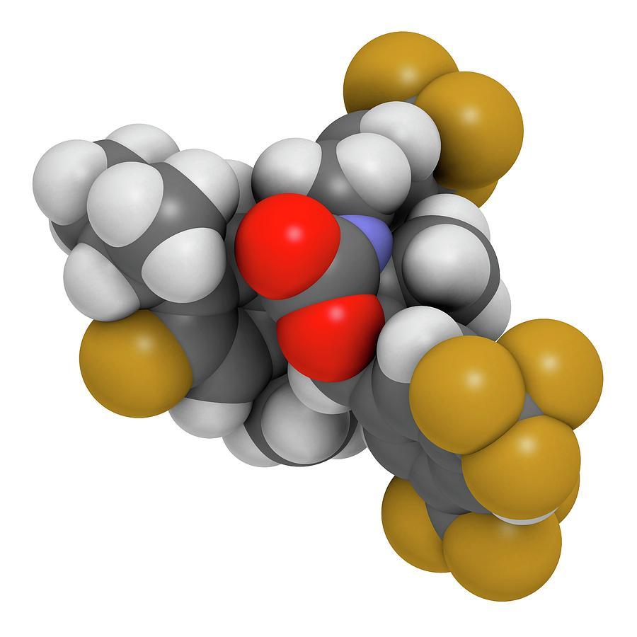 Cetp Photograph - Hypercholesterolemia Drug Molecule by Molekuul