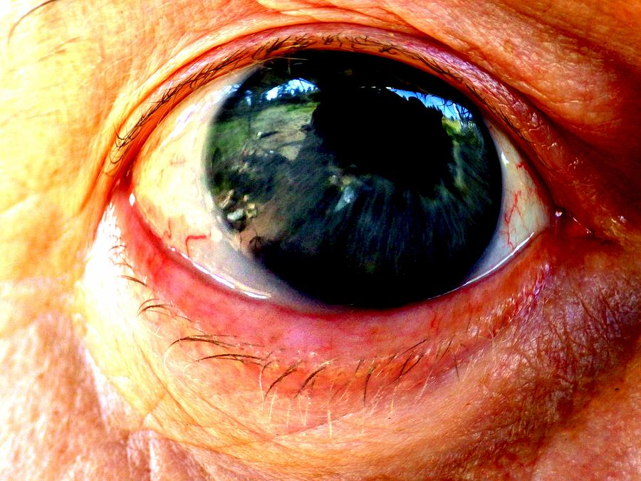 Eye Photograph - I See You by One Rude Dawg Orcutt