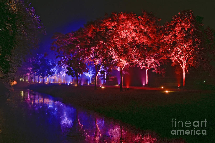 Trees Photograph - Illumina Light Show At Schloss Dyck Germany by David Davies
