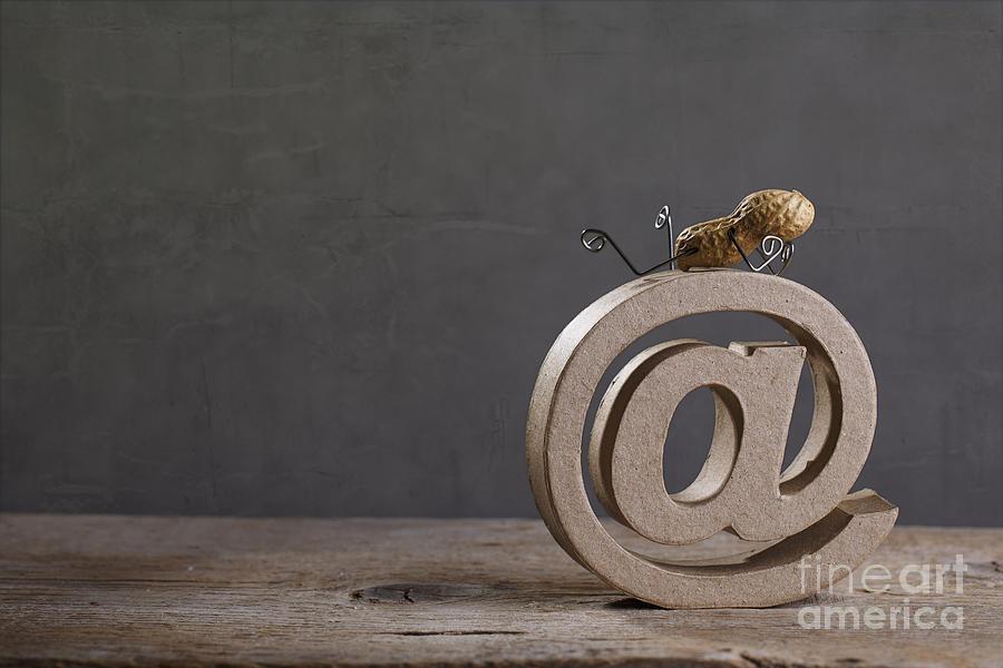 Simple Photograph - Internet by Nailia Schwarz
