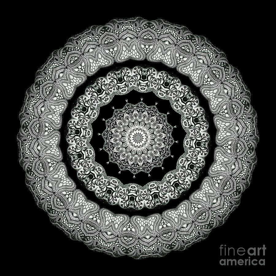 Abstract Photograph - Kaleidoscope Ernst Haeckl Sea Life Series Black And White Set On by Amy Cicconi