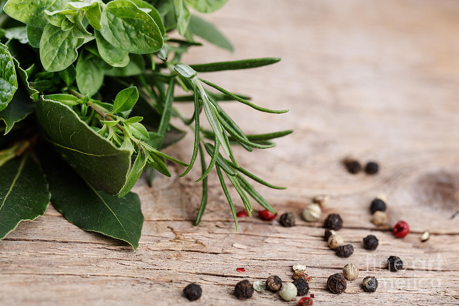 Kitchen Herbs Photograph