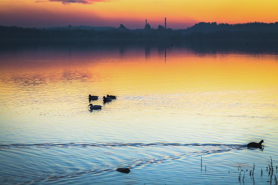Lake Sunset Photograph by Deimagine