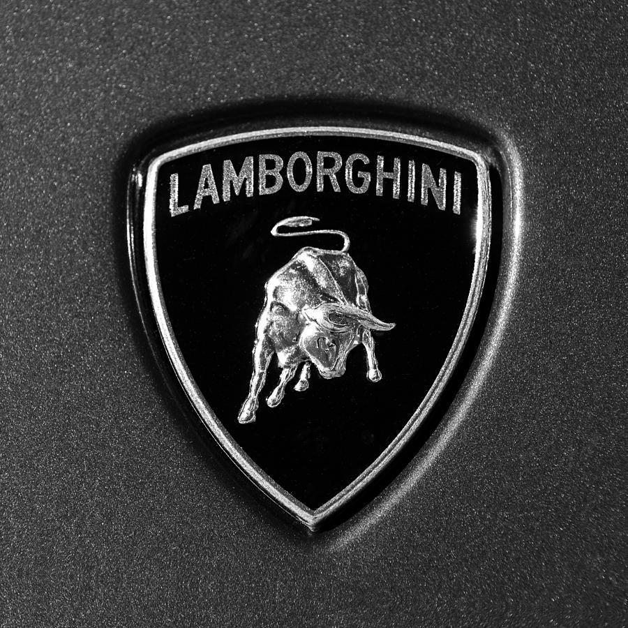 Lamborghini Emblem Photograph By Jill Reger