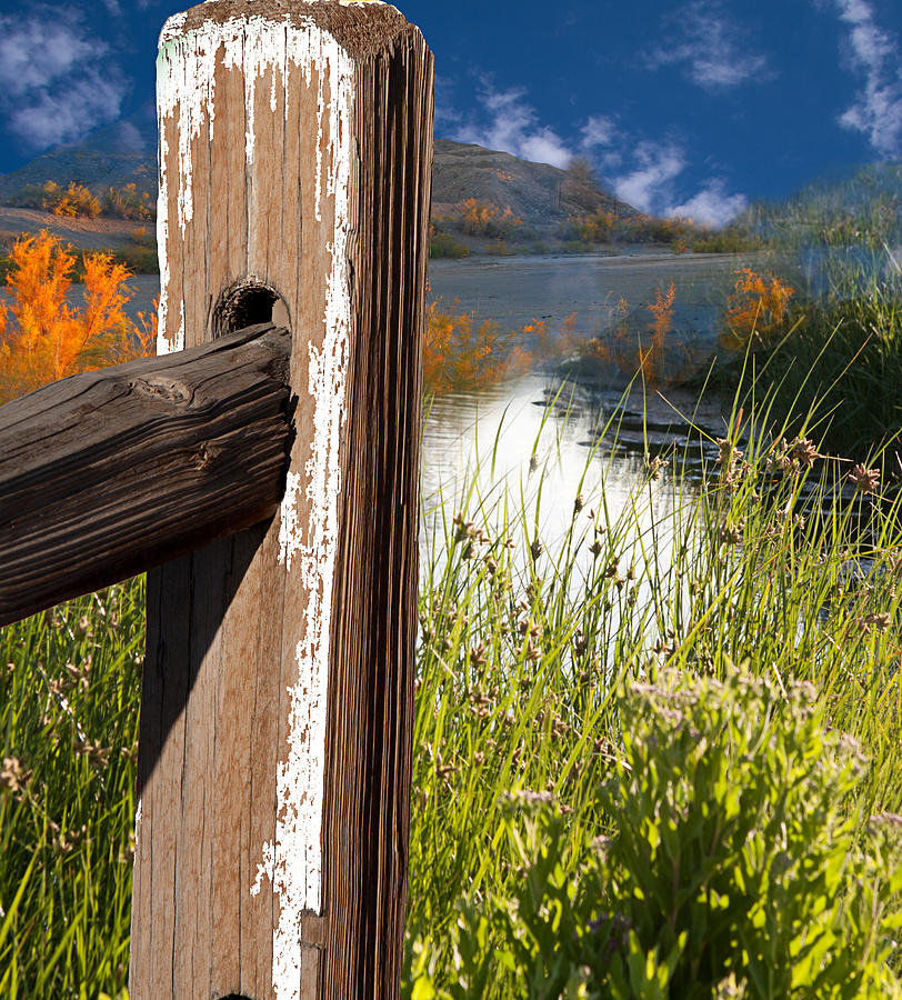 Agriculture Photograph - Landscape With Fence Pole by Gunter Nezhoda