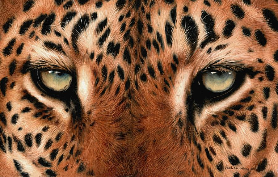 leopard eye close up - photo #14