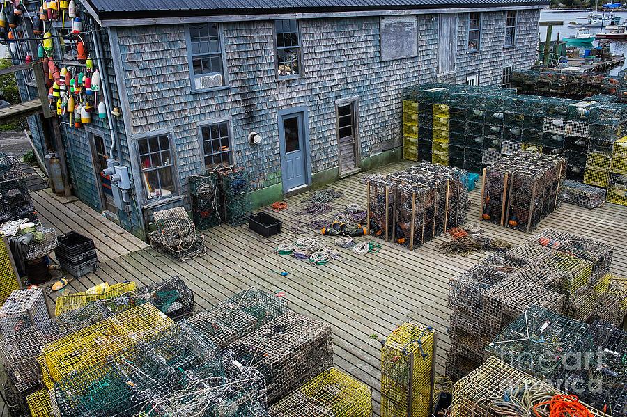 Bernard Photograph - Lobster Traps by John Greim