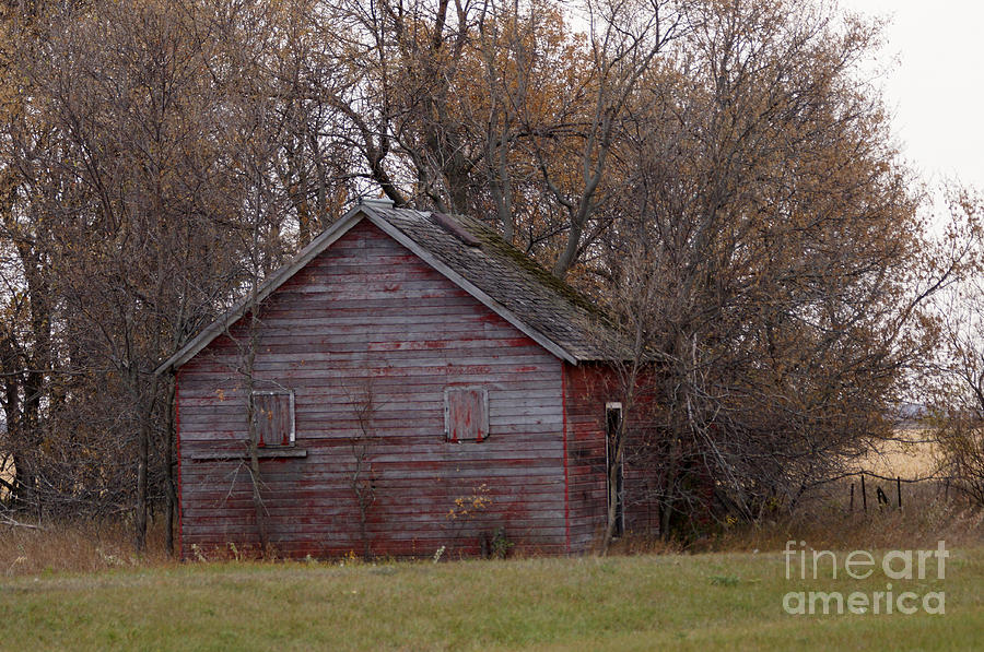 Barn Photograph - Looking Back by Lori Tordsen