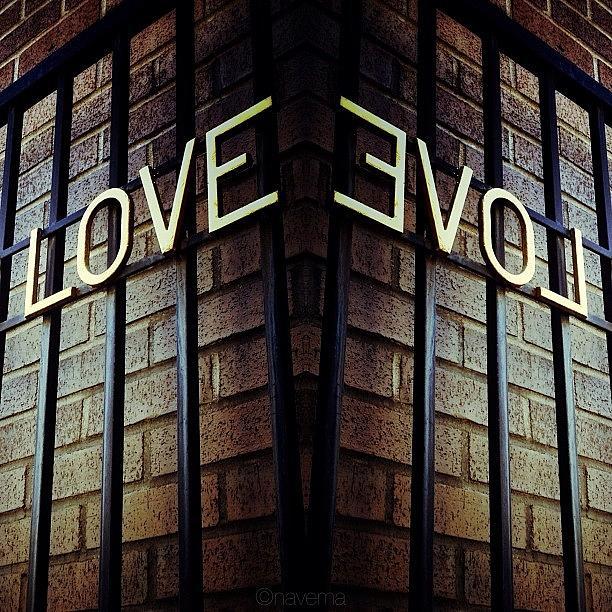 Love Photograph - Love by Natasha Marco