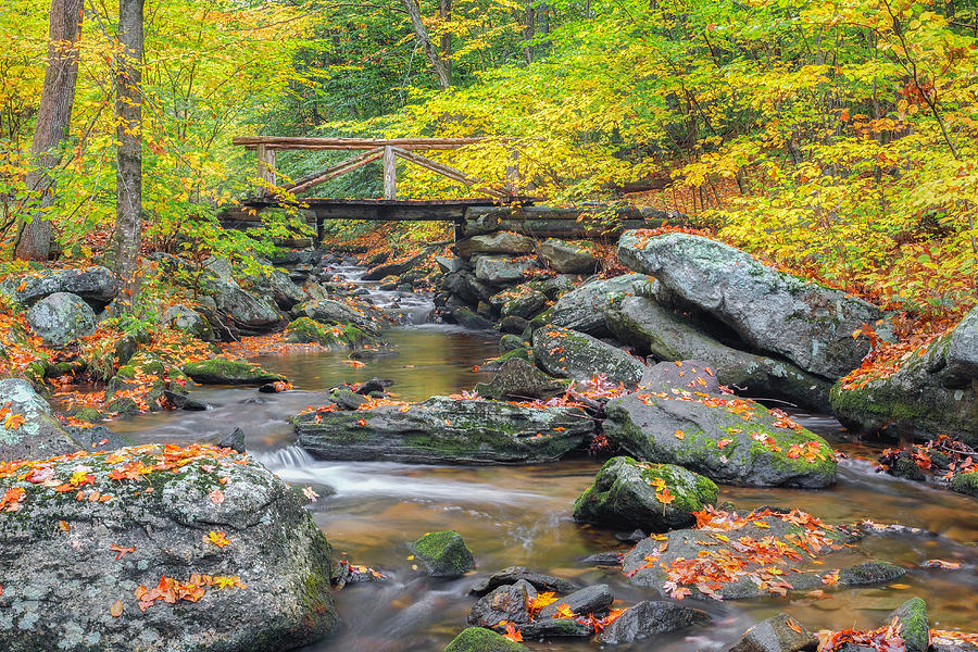 Bridge Photograph - Macedonia Brook by Bill Wakeley