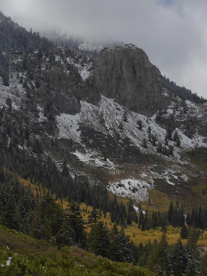 Mammoth Rock Fall Color by Don Kreuter