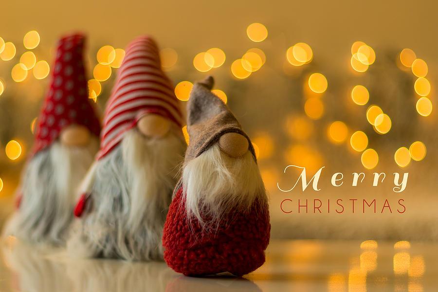 December Photograph - Merry Christmas greeting card by Aldona Pivoriene