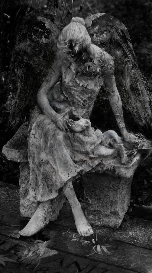 Photo Photograph - Miseries by David Fox