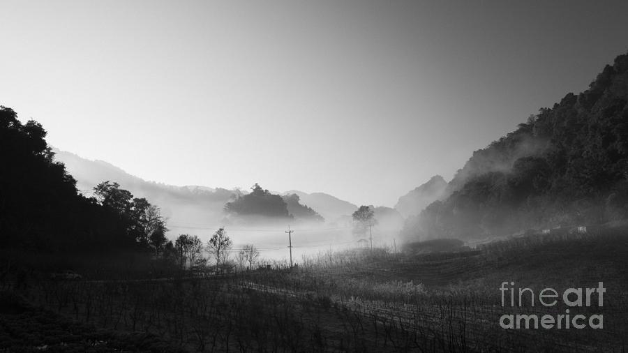 B&w Photograph - Mist In The Valley by Setsiri Silapasuwanchai