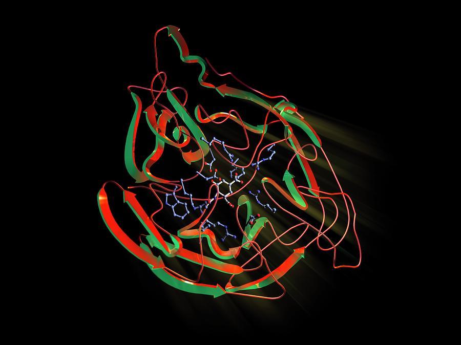 Biochemical Photograph - Neuraminidase by Hipersynteza