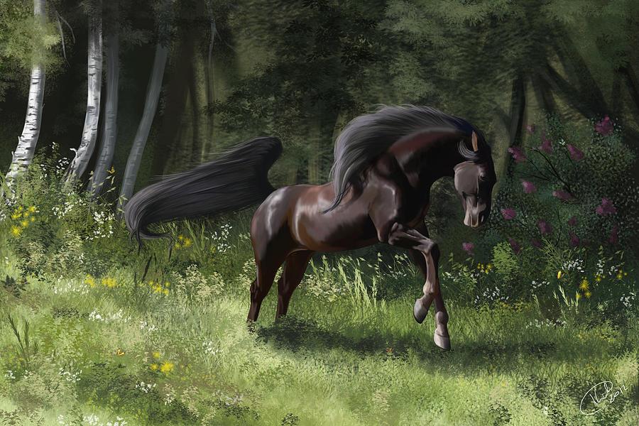 Horse Digital Art - New Beginning by Kate Black