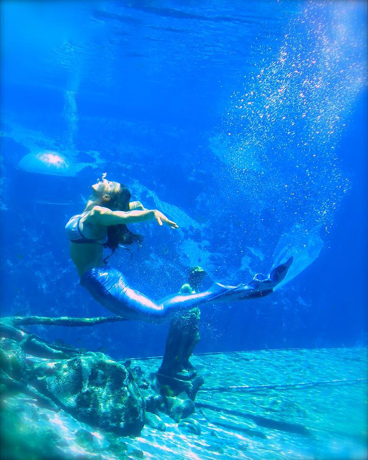 Mermaid Spring by Julie Komenda