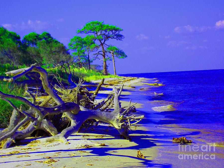 Beach Photograph - North Florida Beach by Annette Allman