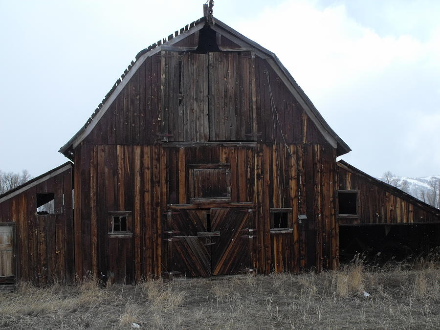Barn Photograph - Old Barn by Yvette Pichette