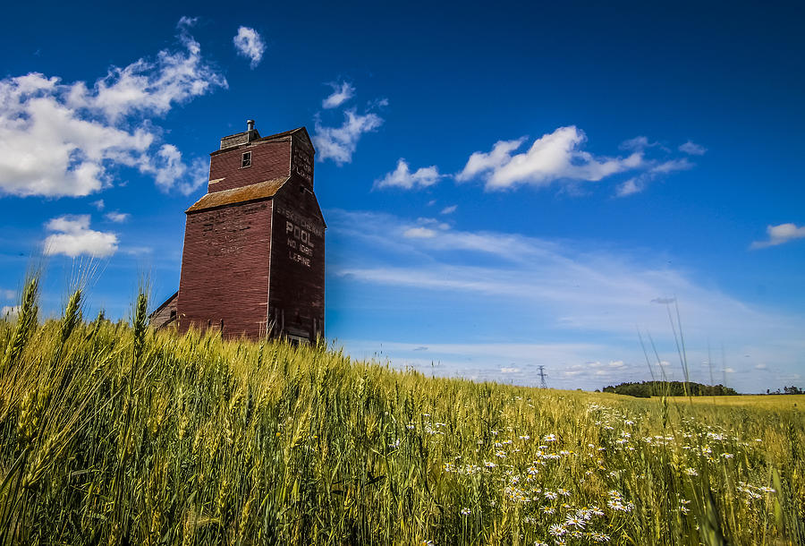 Blue Photograph - Old Grain Elevator by Gerald Murray Photography