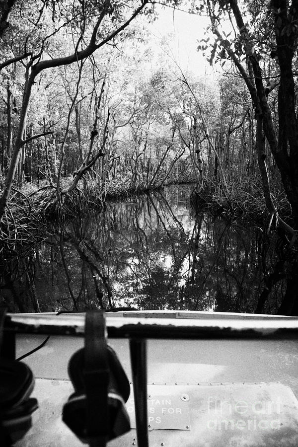 Airboat Photograph - On Board An Airboat Ride Through A Mangrove Jungle In Everglades City Florida Everglades by Joe Fox