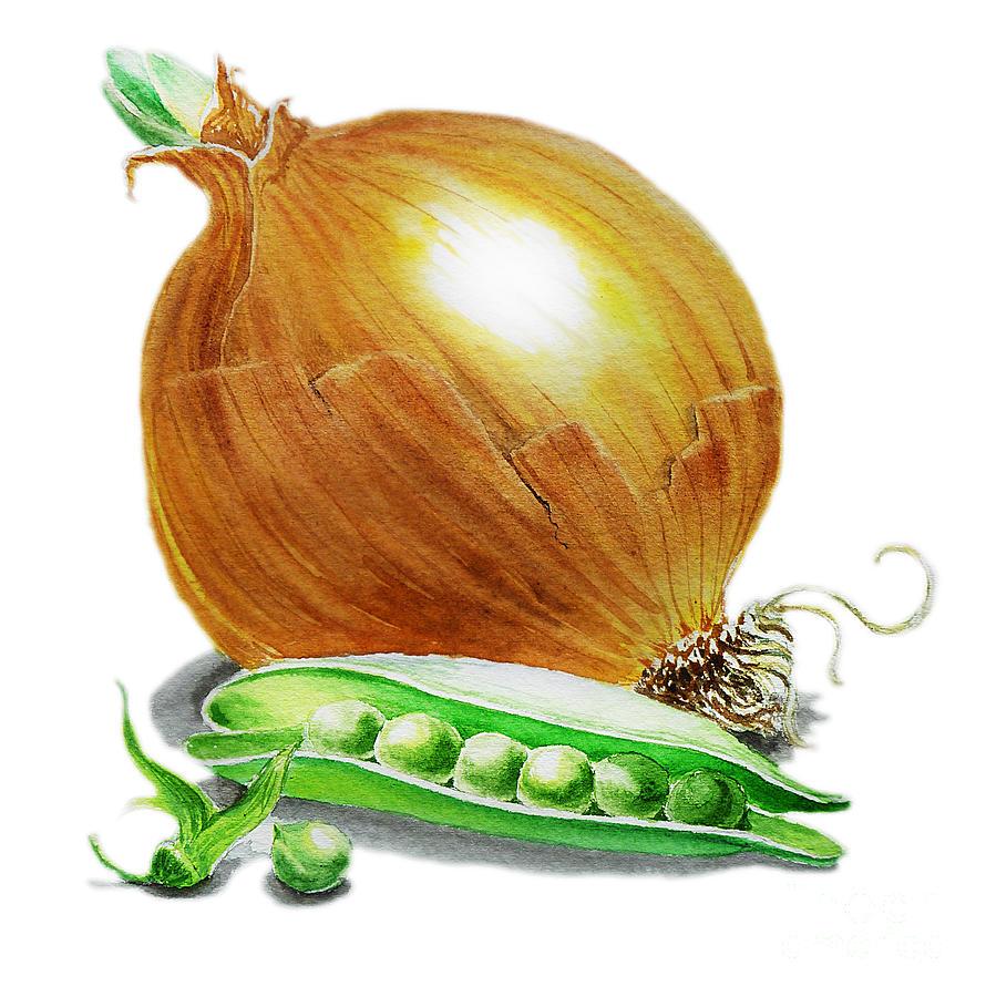 Onion Painting - Onion And Peas by Irina Sztukowski