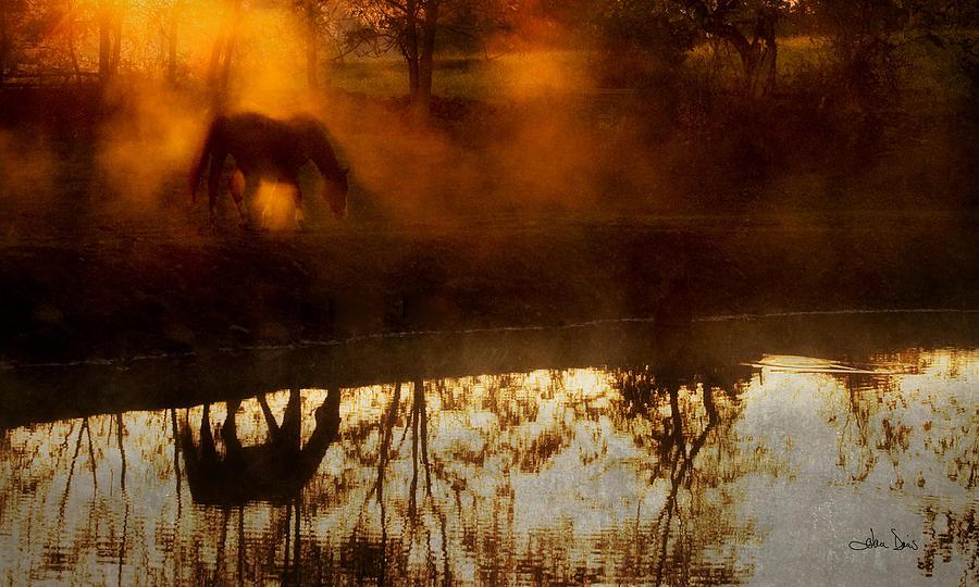 Joan Davis Photograph - Orange Mist by Joan Davis