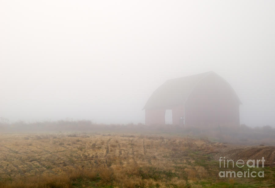 Barn Photograph - Out Of The Fog by Mike  Dawson