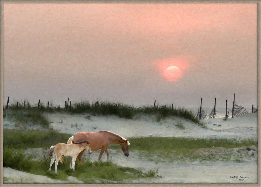 Outer Banks Wild Horses by Bobbie Turner
