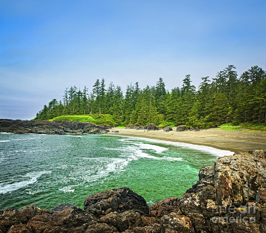 Pacific Photograph - Pacific Ocean Coast On Vancouver Island by Elena Elisseeva