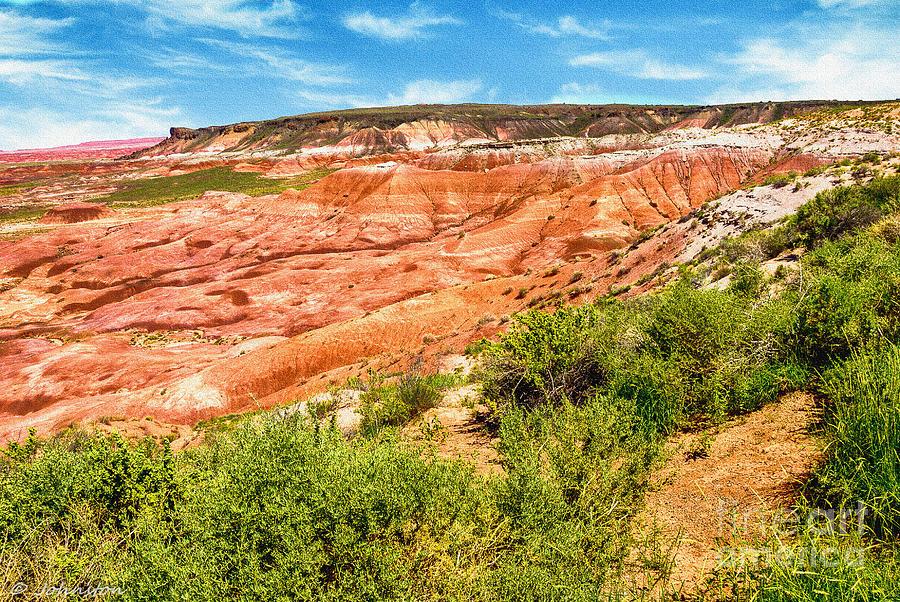 Arizona Photograph - Painted Desert National Park Panorama by Bob and Nadine Johnston