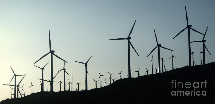Palm Desert Wind Mills Photograph - Palm Desert Wind Mills by Gregory Dyer