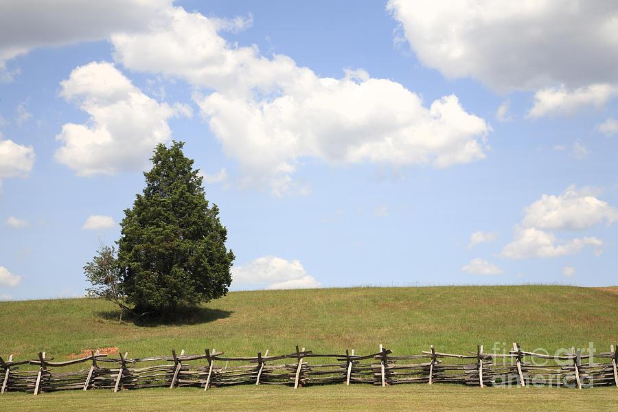 Battle Of Bull Run Photograph - Peace At Manassas by William Kuta