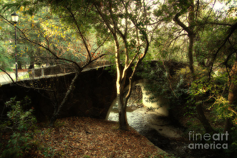 Emeryville Photograph - Pedestrian Bridge And Strawberry Creek  . 7d10152 by Wingsdomain Art and Photography