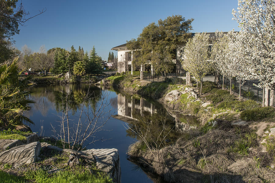 Library Photograph - Placer County Library by Jim Thompson