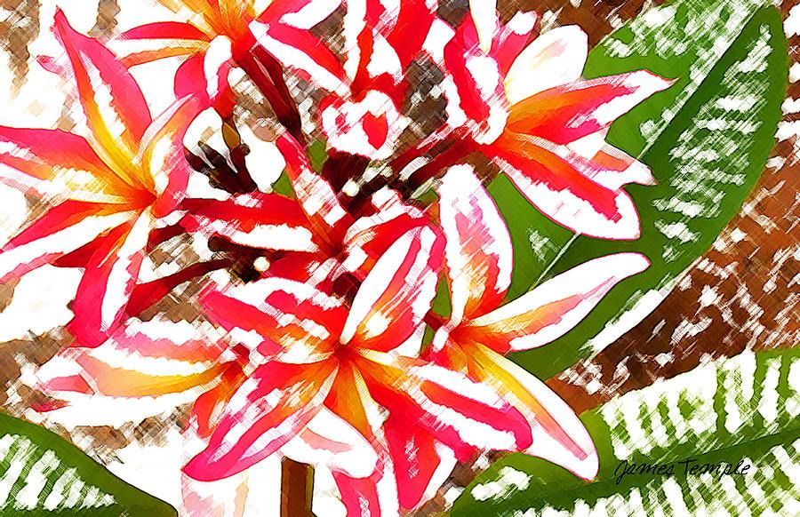 Plumeria Digital Art - Plantation Plumeria by James Temple