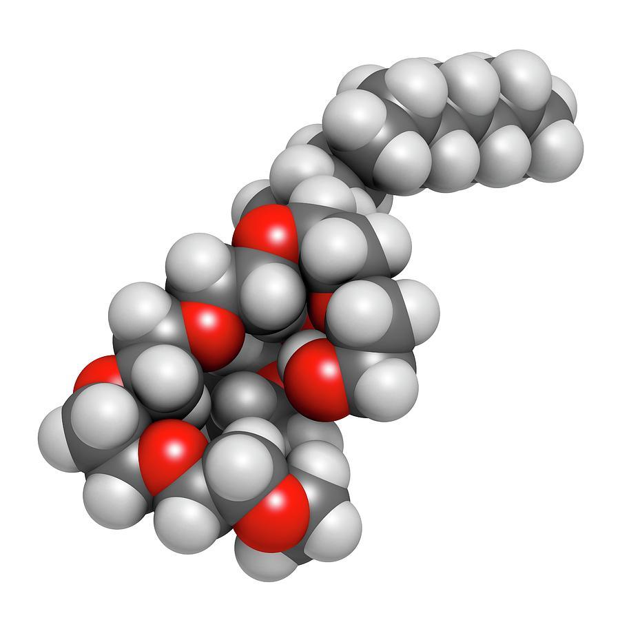 Anaesthetic Photograph - Polidocanol Sclerosant Drug Molecule by Molekuul