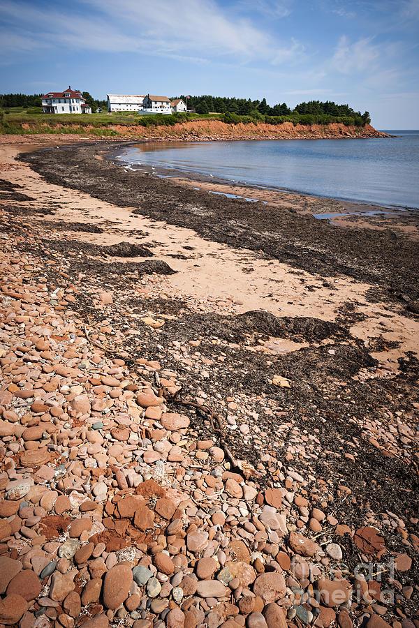 Prince Edward Island Photograph - Prince Edward Island Coastline by Elena Elisseeva