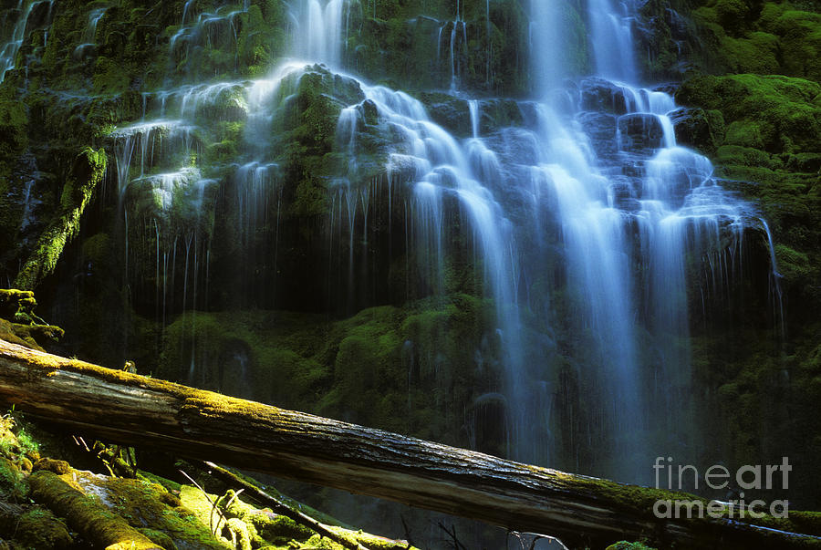 Proxy Falls Photograph - Proxy Falls Oregon by Bob Christopher