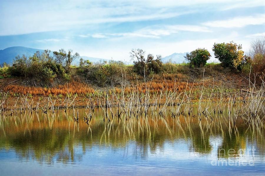 Lakes Photograph - Quarry Lakes by Ellen Cotton